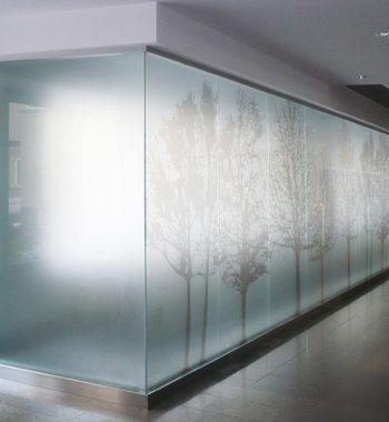 Матовые перегородки из стекла